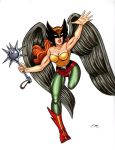 Hawkgirl Colored Commission by em-scribbles