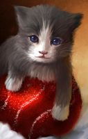 Kitten on Christmas for My Mom by W-E-Z