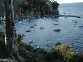 catalina bay from the hills by brittishx