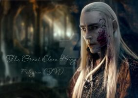 The Great Elven King by Pelegrin-tn