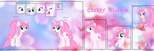 Cherry Blossom's reference sheet by DOROSHll