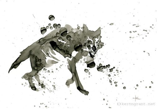 Wolf by Kerong