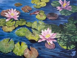 water lily by Matzi-Pan