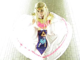 Youmacon Preview of P Zelda by KittyKarlson