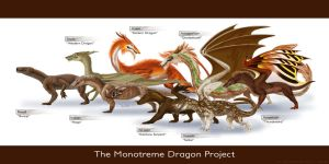 Monotreme Dragon Spread by Supaslim