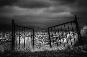 Open Gates by eccentricphotography