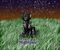 Request: Nightpaw by FantasiaKitty