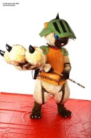 Airou cat Monster hunter 9 by Shoko-Cosplay