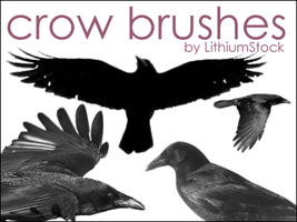 Crow Brushes I by LithiumStock