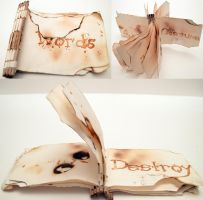 Burning Words Piano Bound book by AshesToEmbers