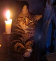 Tumnus and a candle. by ZoraEmily