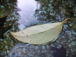 Floating Leaf by Fapplephill