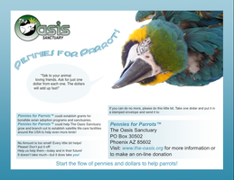 Pennies for Parrots by vegamaris