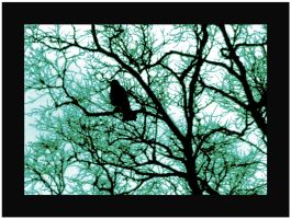 Lonely Crow Green by auroraboralis