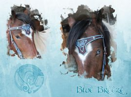Blue Breeze by the-warhorse