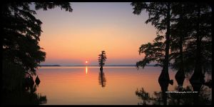Sunrise over Reelfoot Lake by TRBPhotographyLLC