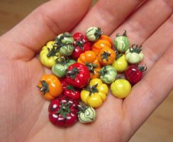 Heirloom Tomatos Close Up by lily-inabottle