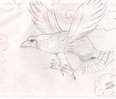 Eagle Pen Sketch by TatsukiIshida10