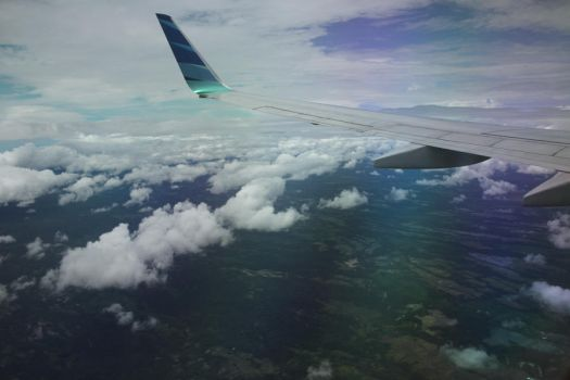 from the plane by shashanicholls