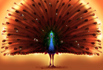 Peacock Deity by soulwithin465
