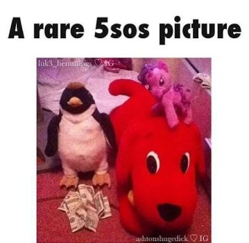 rare 5sos picture by silvertaco