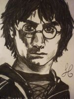 harry potter by viveie