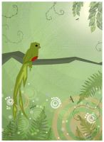 Quetzal by Beckwee