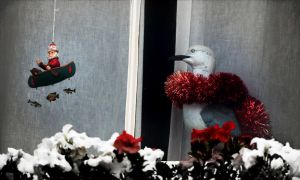 Window whimsy at xmas by CouchyCreature