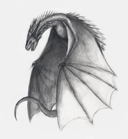 Drogon by Loreen94