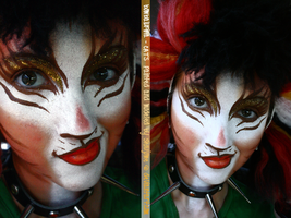 CATS - Neutral Bombalurina by shoujome