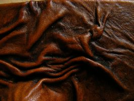 Leather Texture by Tasastock