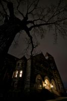 Stewart Hall Midnight by Bawwomick