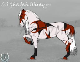 SS FLS Ghadah Ishraq by amour-interdit