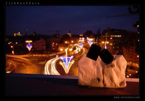Tea and the city I - LoveBirds by tisbone