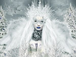 The winter Queen by annemaria48