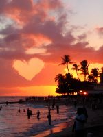 ++ paradise + love impact by charmbuster