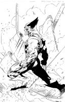 Ryan B. / Travinapple - Wolverine by Travinapple