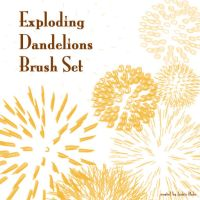Exploding Dandelion Brush Set by jackiebabe
