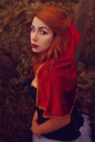 Little Red Riding Hood by ImNotMizu
