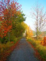 Autumn road by RobleskaZeppelin
