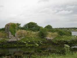Ireland: Ruins near Shannon1 by Amliel