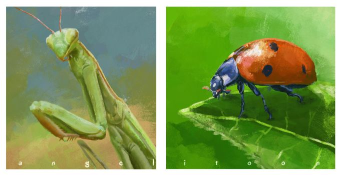Insects by angelitoon