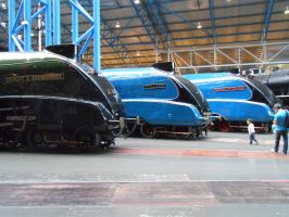 NRM: LNER Dwight, Mallard and Dominion by BoomSonic514