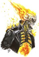 GHOST RIDER watercolor sketch by WEDMER