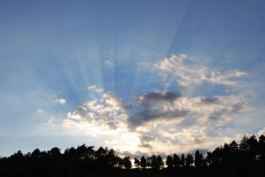 Sun rays by FiorePhotography