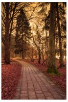Red Path by aniabeata