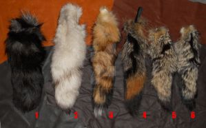Clearing Sale - Last of Fox Tails by Shamans-Yoik
