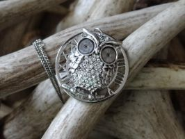 Steampunk silver owl by Hiddendemon-666