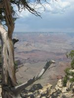 Grand Canyon by Cam-s-creations