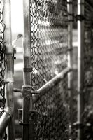 Fence - Close by Calzinger